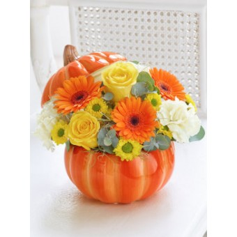 Charming Pumpkin Ceramic