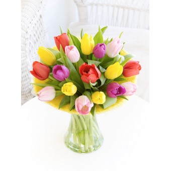 Mixed Tulip Perfect Gift
